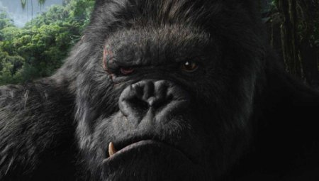 El King de los Kong